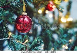 closeup red bauble hanging decorated christmas stock photo