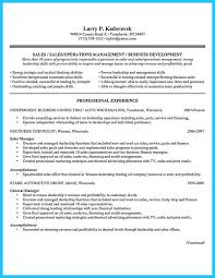 Retail Sales Representative Job Description Resume by Best 25 Sales Resume Ideas On Pinterest Business Resume How To