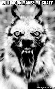 Crazy Wolf Meme - full moon makes me crazy insanity wolf new meme generator