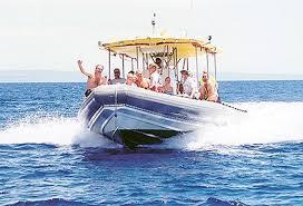 lanai pictures lanai snorkeling onboard maui adventure cruises explorer super raft