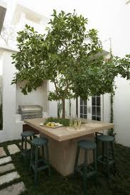 image amenagement jardin aménager son jardin et terrasse u2013 52 idées pour votre oasis