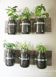 mason jar wall planter u2013 dan likes this