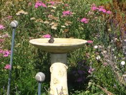 native plant nursery santa cruz seasonal bee gardening uc berkeley urban bee lab