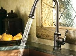delta bronze kitchen faucet delta kitchen faucet snaphaven