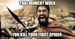 Kill Spider Meme - that moment when you kill your first spider meme