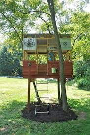 cool tree house build a tree house outdoor living treehouse tree