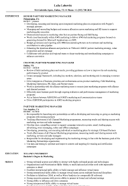 business marketing resume business development manager director