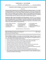 Administration Resume Samples Pdf by Program Analyst Resume Resume For Your Job Application