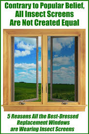 Fly Screens For Awning Windows The Best Dressed Replacement Windows Wear Insect Screens Renewal
