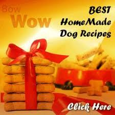 727 best doggie parties images on pinterest doggie treats dog