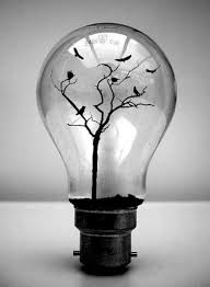 in light bulbs light bulb crafts this is great the way you can use a light bulb