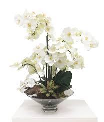 white orchids floral arrangement white orchids mh2g
