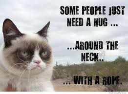 Meme Angry Cat - some people just need a hug grumpy cat weknowmemes