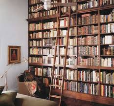 peaked roof built in bookcase wall of books with rolling ladder