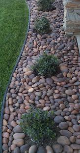 fantastic low maintenance garden landscaping ideas front yard best