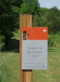 Interior Signs Trail 1000 Images About Experiential Graphic Design On Pinterest