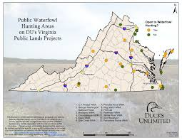 Waterfowl Migration Map Public Hunting On Du Projects In Virginia