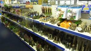 booker maidenhead aquatics fish store review tropical fish site