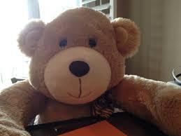 Meme Teddy Bear - teddy bear meme generator imgflip