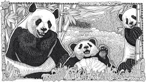 panda doodle time lapse with printable coloring page youtube