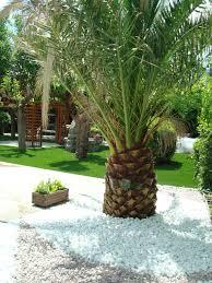 Backyard Improvement Ideas by Jardin Con Cesped Artificial Piedra Decorativa Alrededor De