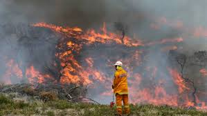 Canada Wildfires by Tasmania Fire Service Sends Aid To Canada The Advocate