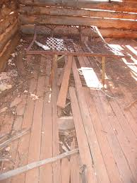 cabin floor gustive o larson cabin in zion national park