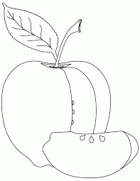 coloring page of apple coloring home