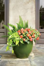 Unusual Planters For Container Gardens Heat Tolerant Container Gardens For Sweltering Summers Container
