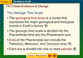 fossil formation the history of life nearly all fossils are