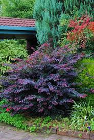 modren garden ideas on a hill backyard landscaping u for design 5