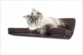 furniture magnificent cat hammock with stand lovely diy cat