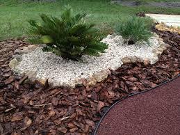 the use of seashells in a florida friendly garden design florida