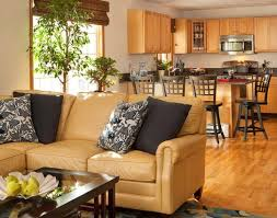 Which Leather Is Best For Sofa Choose The Right Sofa Color For Your Living Room