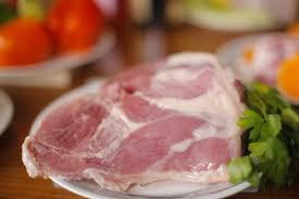 natural raw dog food mississauga oakville brampton milton