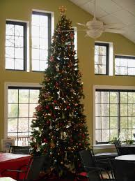 Christmas Tree Without Ornaments by Photo Album Christmas Trees Without Ornaments All Can Download