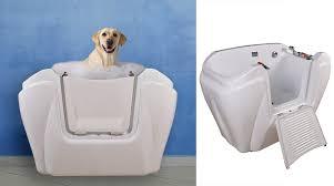 bagno per cani stanco e senza appetito regalagli l idromassaggio