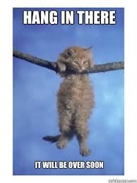 Hang In There Meme - hang in there kitty hang in there baby know your meme