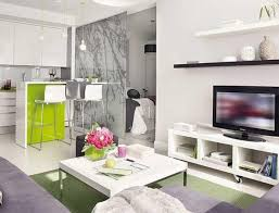 How To Decorate Your Kitchen by Alluring How To Decorate Your Apartment Showcasing Tranquil Living