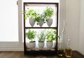 modern indoor herb garden gardening ideas