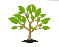 small tree clipart 57