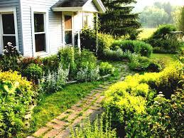 Landscape House Tropical Landscaping Ideas For Front Of House Lamidge Net Garden