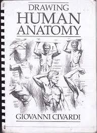 Human Anatomy Physiology 7th Edition Drawing Human Anatomy By Giovanni Civardi Documents