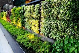 home theater system delhi ncr vertical garden systems in delhi home outdoor decoration