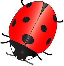 digital nail art printers ladybird download these for your printer