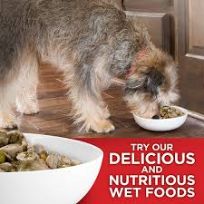hill s science diet light dry dog food hill s science diet light with chicken meal barley dry dog