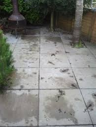 Doff Patio Cleaner Fyfe Stone Wall That Has Not Been Cleaned Since It Was Built 20