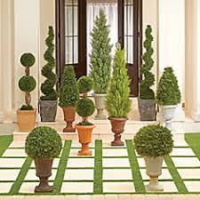 Outdoor Topiary Trees Wholesale - topiaries u0026 artificial outdoor plants improvements