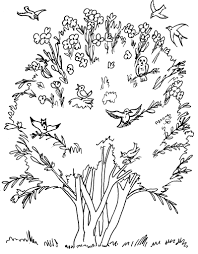 coloring download mustard seed coloring page mustard seed