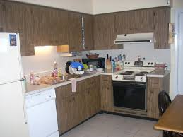 appliance should i paint my kitchen cabinets white what color